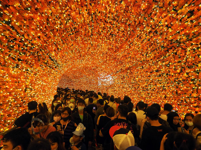 People walk through the Maple Leaf Tunnel in New Taipei City, Taiwan, 15 November 2020. The New Taipei City Government has kickstarted Christmas celebrations by installing a Christmas tree and light decorations as well as hosting performances for children. (Photo by David Chang/EPA/EFE)
