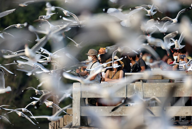 People watch seagulls at Bang Pu seaside resort in Samut Prakan province on the outskirts of Bangkok, Thailand, December 7, 2020. (Photo by Athit Perawongmetha/Reuters)