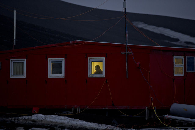 In this January 24, 2015 photo, a scientist stands behind a window on the Spanish base Gabriel de Castilla on Deception Island, part of the South Shetland Islands archipelago in Antarctica. If experts are right, and the West Antarctic ice sheet has started melting irreversibly, what happens here will determine if cities such as Miami, New York, New Orleans, Guangzhou, Mumbai, London and Osaka will have to regularly battle flooding from rising seas. (Photo by Natacha Pisarenko/AP Photo)