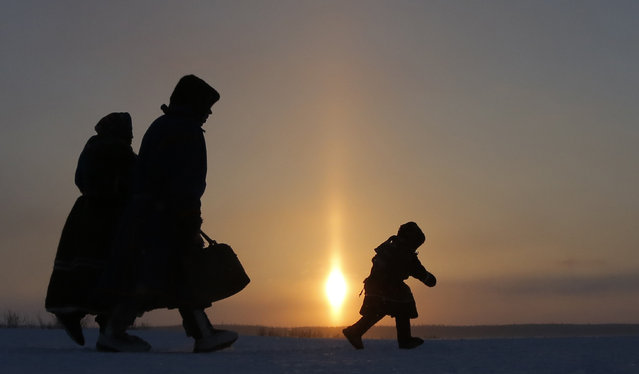 In this photo taken on Sunday, March 15, 2015, a Nenets family walks after the Reindeer Herder's Day holiday in the city of Nadym, in Yamal-Nenets Region, 2500 km (about 1553 miles) northeast of Moscow, Russia. Some participants at the Reindeer Herder's Day travel hundreds of kilometers across the frozen tundra to attend the competition in the region in northern Siberia, more than half of the territory of which lies above the Arctic Circle. (Photo by Dmitry Lovetsky/AP Photo)