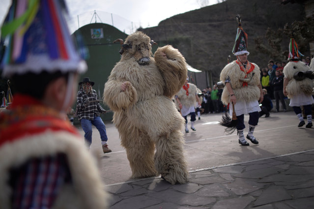 A masked reveller dressed as a bear performs alongside dancers during carnival celebrations in Ituren, northern Spain January 30, 2017. (Photo by Vincent West/Reuters)