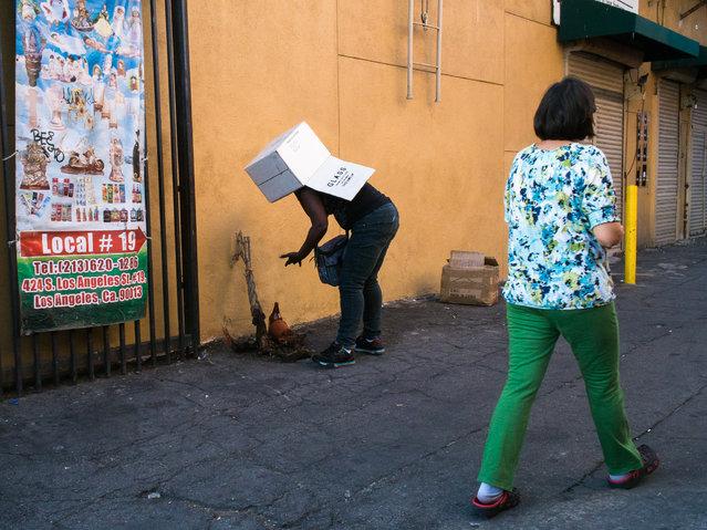 """Box Tops"". (Photo by DV8)"