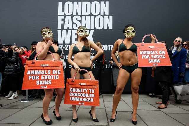 Models weaering lingerie and crocodile masks take part in a protest for the PETA animal welfare group outside the London Fashion Week venue on February 17, 2017 in London, England.  The group was calling for the end of the use of crocodile skin in fashion. (Photo by Leon Neal/Getty Images)