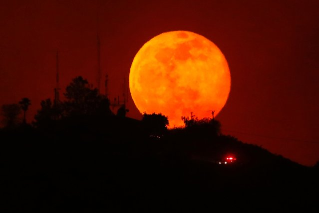 An emergency vehicle makes is way past a rising moon as it travels along a burned-out hillside near San Marcos, California. (Photo by Mike Blake/Reuters)