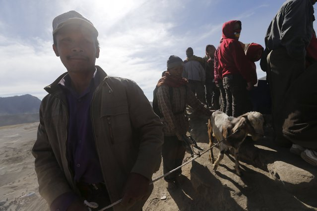 Hindu worshippers hold a goat, which will be thrown into the crater as their offering, during the Kasada Festival at crater of Mount Bromo in Probolinggo, Indonesia's East Java province, August 1, 2015. (Photo by Reuters/Beawiharta)