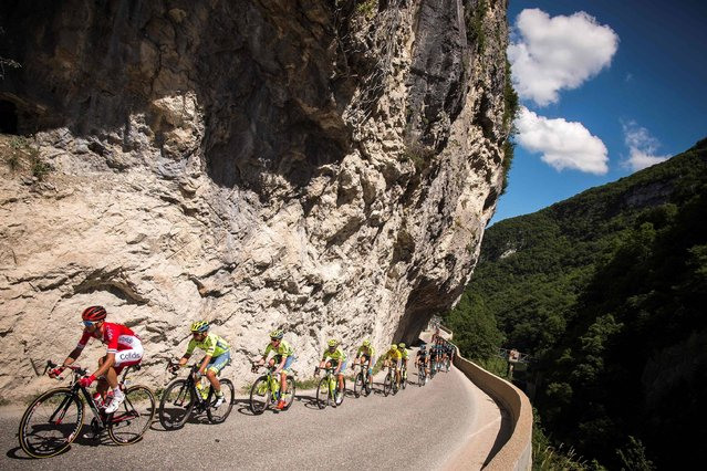 The pack rides during the second stage (Cluses – Saint – Vulbas) of the 68th edition of the Dauphine Criterium cycling race on June 06, 2016 in Saint-Vulbas. (Photo by Lionel Bonaventure/AFP Photo)