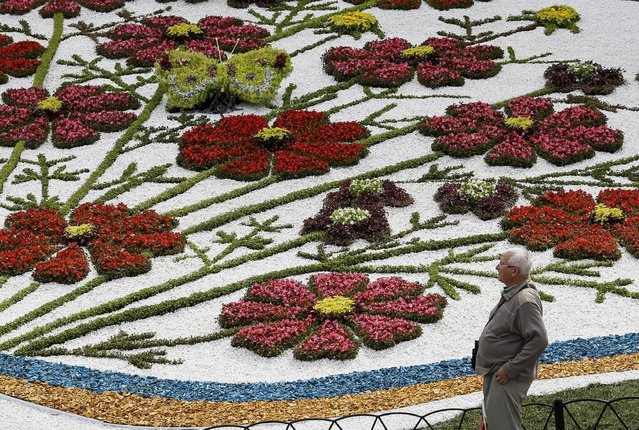 A visitor looks on at a flower exhibition in Kiev, Ukraine, August 21, 2015. (Photo by Gleb Garanich/Reuters)
