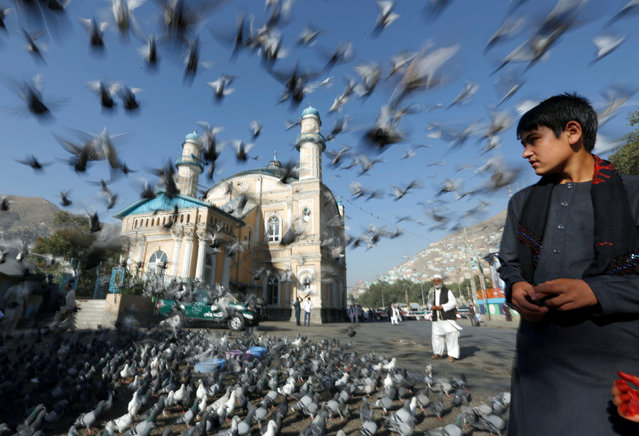 Pigeons fly outside the Shah-e Doh Shamshira Mosque, as people head for morning prayers to celebrate the first day of the Muslim holiday of the Eid al-Adha, in Kabul, Afghanistan September 1, 2017. (Photo by Mohammad Ismail/Reuters)