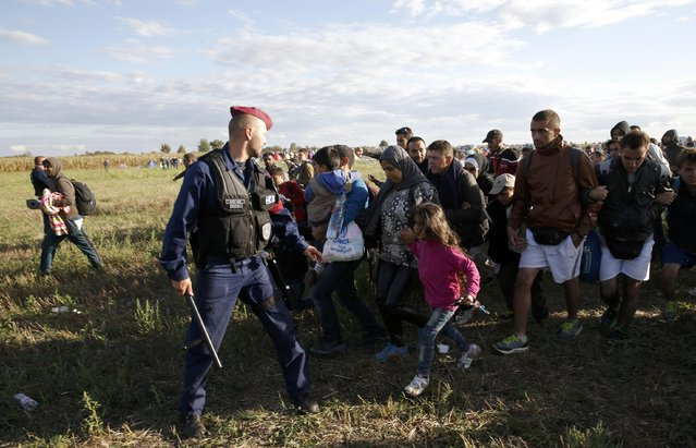 A group of migrants leaves a collection point in the village of Roszke, Hungary, September 7, 2015, as they decided to go the nearest town of Szeged. (Photo by Marko Djurica/Reuters)