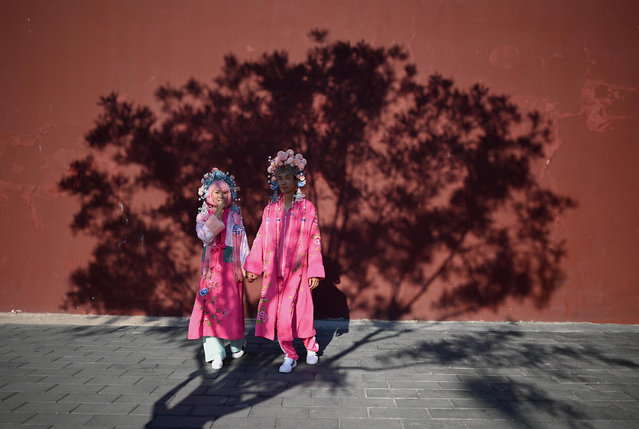 A couple wearing costumes poses for a photographer underneath the shade of a tree in Beijing on May 26, 2020. (Photo by Noel Celis/AFP Photo)