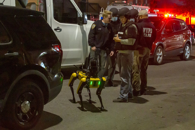 Police and ESU (including this walkig robot) at the scene of person shot where the suspect barricaded themselves on the basement at 299 Atkins Ave, in East New York, Brooklyn on October 28, 2020. (Photo by William Miller/The New York Post)