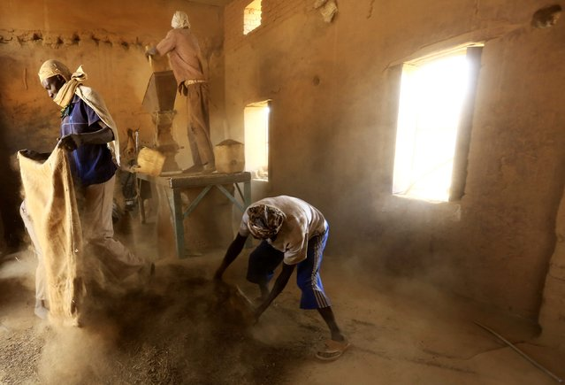 Workers pour sacks of tobacco for grinding inside a snuff tobacco factory in el-Fasher, in North Darfur February 5, 2015. (Photo by Mohamed Nureldin Abdallah/Reuters)