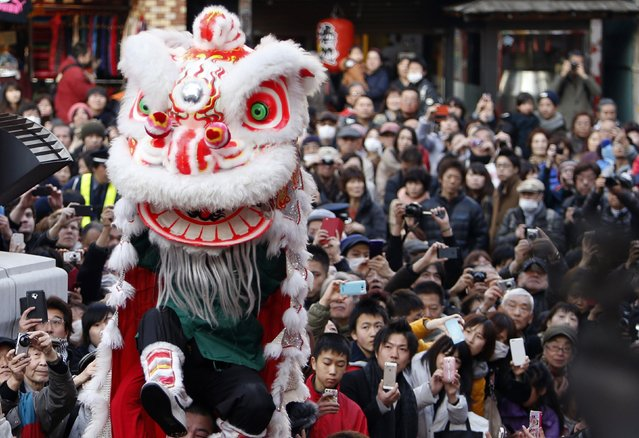 A lion dance is performed to celebrate the Chinese Lunar New Year as visitors watch during the Chinese Lunar New Year celebrations at Chinatown in Yokohama, south of Tokyo, February 19, 2015. (Photo by Yuya Shino/Reuters)