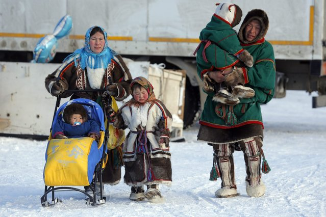 In this photo taken on Sunday, March 15, 2015, a Nenets family walks after the Reindeer Herder's Day in the city of Nadym, in Yamal-Nenets Region, 2500 kilometers (about 1553 miles) northeast of Moscow, Russia. (Photo by Dmitry Lovetsky/AP Photo)