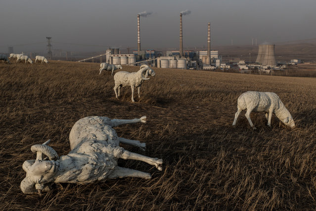 Statues of sheep in a park overlooking a coal fuelled power plant in Holingol. Herders have been forcefully removed from the grassland around Holingol due to severe pollution affecting the health of their livestock. (Photo by Gilles Sabrie/The Washington Post)