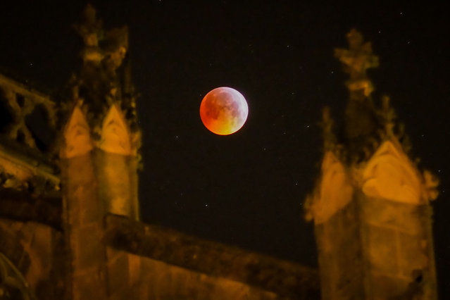 A picture taken on January 21, 2019 shows the so-called Super Blood Wolf Moon behind the Tours's cathedral on January 21, 2019, central France. (Photo by Guillaume Souvant/AFP Photo)