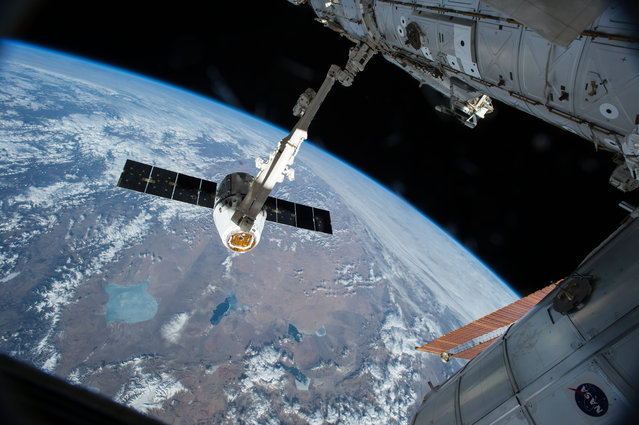 The Canadarm 2 reaches out to capture the SpaceX Dragon cargo spacecraft and prepare it to be pulled into its port on the International Space Station Friday April 17, 2015. The Canadarm2 robotic arm will maneuver Dragon to its installation position at the Earth-facing port of the Harmony module where it will reside for the next five weeks. (Photo by AP Photo/NASA)