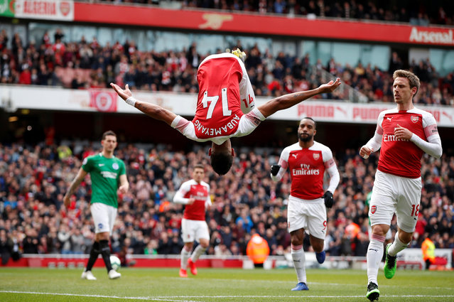 Pierre-Emerick Aubameyang celebrates scoring a goal for Arsenal during the Premier League match between Arsenal FC and Brighton & Hove Albion at Emirates Stadium on May 5, 2019 in London, United Kingdom. (Photo by John Sibley/Action Images via Reuters)