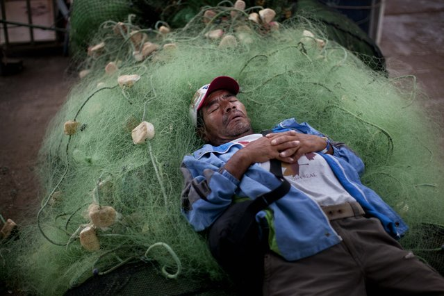 A small scale fishermen naps on a jumble of fishing nets in Lima, Peru, Wednesday, April 2, 2014. Chilean authorities discovered surprisingly light damage Wednesday from a magnitude-8.2 quake that struck in the Pacific Ocean, Tuesday evening, near the mining port of Iquique, about 87 miles from the Peruvian border. Tsunami warnings issued for Chile, Peru and Ecuador have been lifted. Six deaths have been reported. (Photo by Rodrigo Abd/AP Photo)