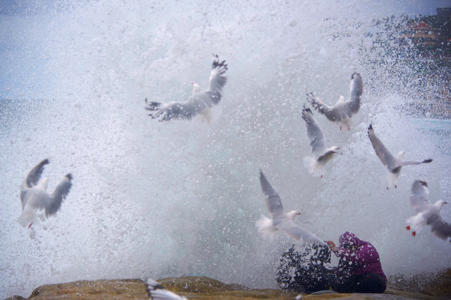 Seagulls and rock-fishing couple, Arie and Zakiyyah Widodo are sprayed by a large wave breaking against the rocks near Sydney's Bronte Beach, Australia, February 26, 2017. (Photo by Aaron Bunch/Reuters)