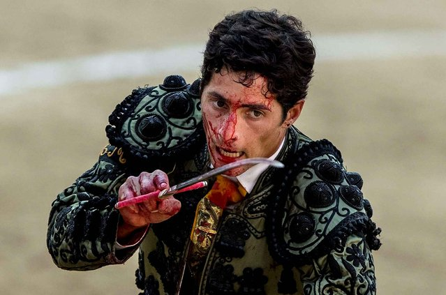 Bullfighter Mario Dieguez prepares his sword to kill a bull during a bullfight at Las Ventas bullring in Madrid, Spain, Sunday, June 28, 2015. Bullfighting is a traditional spectacle in Spain and the season runs from March to October. (Photo by Andres Kudacki/AP Photo)