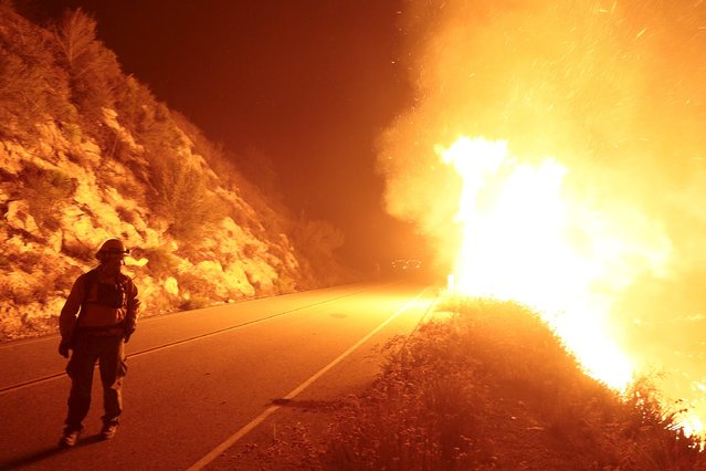 """A firefighter monitors the so-called """"Cabin Fire"""" in the Angeles National Forest near Los Angeles, California August 14, 2015. (Photo by Jonathan Alcorn/Reuters)"""