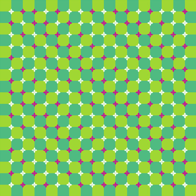 Checkered background and squares appear to wave. (Photo by Akiyoshi Kitaoka/Caters News)