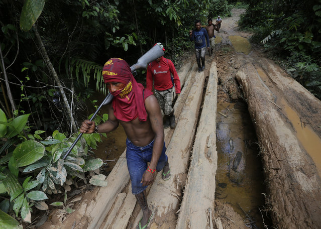 Ka'apor Indian warriors hike during a jungle expedition to search for and expel loggers from the Alto Turiacu Indian territory, near the Centro do Guilherme municipality in the northeast of Maranhao state in the Amazon basin, August 7, 2014. (Photo by Lunae Parracho/Reuters)