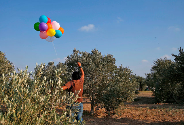 A Palestinian man prepares to release balloon-borne explosive and incendiary devices towards Israeli lands near al-Bureij refugee camp along the Israel-Gaza border, on August 12, 2020. (Photo by Mohammed Abed/AFP Photo)