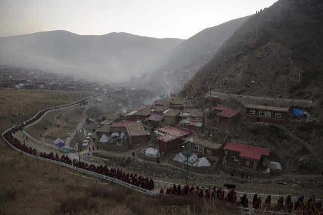 Tibetan Buddhist monks and nuns walk back to their dormitories after attending a daily chanting session during the Utmost Bliss Dharma Assembly, the last of the four Dharma assemblies at Larung Wuming Buddhist Institute in remote Sertar county, Garze Tibetan Autonomous Prefecture, Sichuan province, China November 1, 2015. (Photo by Damir Sagolj/Reuters)