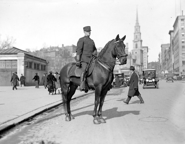 Mounted cop on Tremont Street, 1915. (Photo by Leslie Jones)