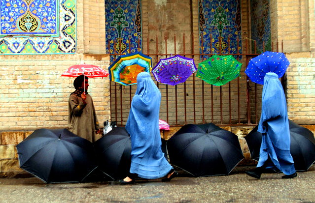 An Afghan man sells umbrella on a raodside in Herat, Afghanistan, 21 January 2017. (Photo by Jalil Rezayee/EPA)