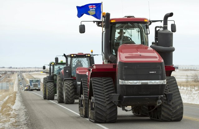 A long convoy of farmers and ranchers driving tractors, sprayers, combines and trucks travel from Fort Macleod north on Highway 2 to Okotoks December 2, 2015 to meet with provincial Labour Minister Lori Sigurdson and Agriculture Minister Oneil Carlier. Alberta's government will retool a bill that would overhaul workplace standards on farms in Canada's biggest cattle-producing province, its agriculture minister said, after protests by farmers and ranchers. (Photo by Mike Sturk/Reuters)