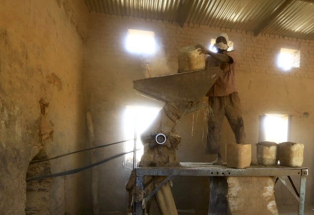 A worker grinds tobacco inside a snuff tobacco factory in el-Fasher, in North Darfur February 5, 2015. (Photo by Mohamed Nureldin Abdallah/Reuters)