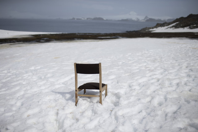 In this January 24, 2015 photo, a chair sits in the snow, left behind by someone who kept watch for a delayed ship, on the Risopatron Base on Robert Island, part of the South Shetland Islands archipelago in Antarctica. Often, scientists find something other than what they were looking for. (Photo by Natacha Pisarenko/AP Photo)
